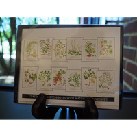 Wendy Cortesi Botanical Notecards