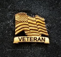 Veteran Lapel Pin