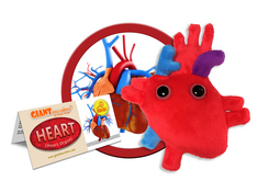 Heart Organ Plush