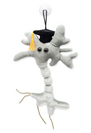 Graduation Brain Cell Plush