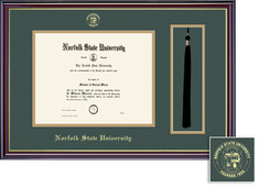 Framing Success Windsor BA Tassel Diploma Frame in a Gloss Cherry Finish and Gold Trim