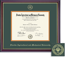 Framing Success Windsor Doctorate Diploma Frame, Double Matted in Gloss Cherry Finish and Gold Trim