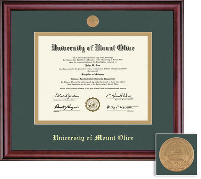 Framing Success Classic Medallion Diploma Frame,Double Matted in burnished cherry finish