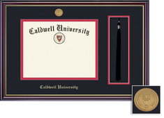 Framing Success Windsor Mdl BA Diploma, Tassel Frame. Dbl Matted in Gloss Cherry Finish, Gold Trim