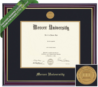 Framing Success Windsor Diploma Frame. Law, Medicine