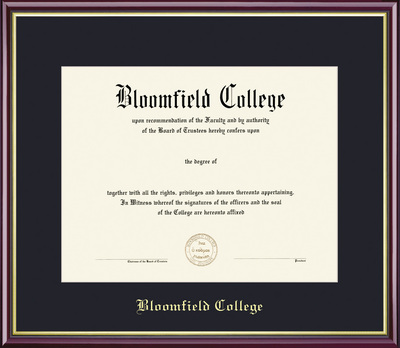 Framing Success Academic Diploma Frame, Single Mat in High Gloss Cherry  Finish with Gold Inner