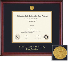 Framing Success Classic Medallion Diploma Frame, Double Mat in a Rich Burnished Cherry Finish