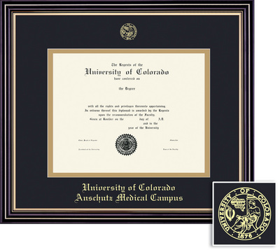 Framing Success Prestige Diploma Frame, Double Mat in a Satin Black Finish, Beautiful Gold Accents