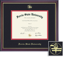 Framing Success Windsor Diploma Frame. Pharmacy, Optometry
