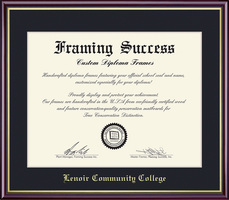 Framing Success Diploma Frame, Single Mat in a High Gloss Cherry Finish with Gold Inner Bevel