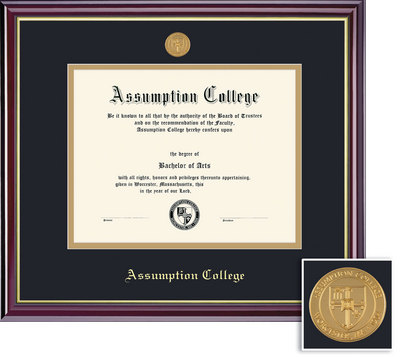 Framing Success Windsor Diploma with Medallion, Dbl Mat, High Gloss Cherry Finish, Gold Inner Bevel