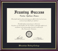 Framing Success Academic Diploma, Single Mat High Gloss Cherry Finish Gold Inner Bevel Slim Contour