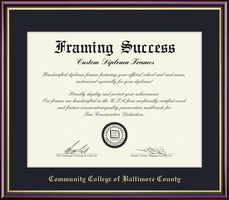 Framing Success Academic Diploma, Double Mat high gloss cherry finish gold inner bevel slim contour