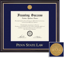 Framing Success Prestige Medallion Double Diploma, Double Mat Satin Black Finish