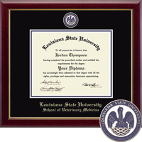 Church Hill Classics Masterpiece Diploma Frame. Veterinary (Online Only)