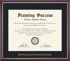 Framing Success Academic Dip, Single Mat high gloss cherry finish a gold inner bevel & slim contour