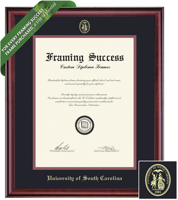 Framing Success Classic Diploma Frame. Bachelors, Masters