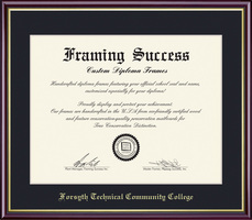 Framing Success Academic Dip, Single Mat high gloss cherry finish gold inner bevel and slim contour