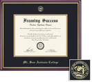 Framing Success Academic Diploma Frame, Double Mat cherry finish with gold inner bevel slim contour