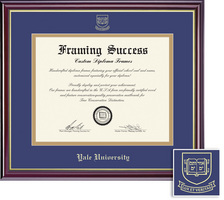 Framing Success Windsor (2018pres) Dip, Double Mat in highgloss cherry finish gold inner bevel