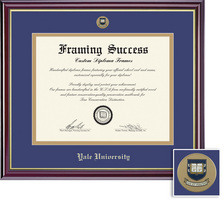 Framing Success Windsor (2018pres) Mdl Dip, Dbl Mat high gloss cherry finish gold inner bevel