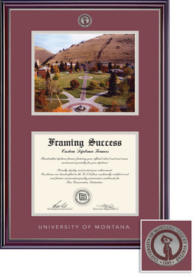 Framing Success Jefferson BA,MA,PhD(2018Pres) Mdl Dip & Photo, in gloss cherry finish, silver bevel