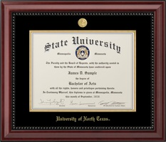 JOSTENS SUMMIT DOCTOR PREMIUM DIPLOMA FRAME IN MATTE MAHOGANY