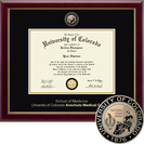 Church Hill Classics Masterpiece Diploma Frame.  Medicine (Online Only)
