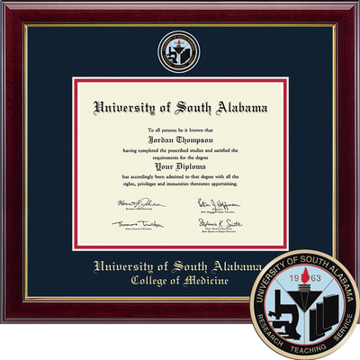 Church Hill Classics Masterpiece Diploma Frame.Medicine (Online Only)