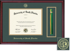 Framing Success Classic Dbl Matted Diploma & Tassel Frame in a Burnished Cherry Finish. Masters, PhD