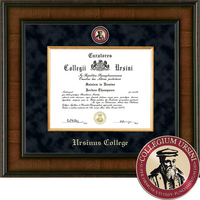 Church Hill Classics Presidential Diploma Frame.  Bachelors (Online Only)