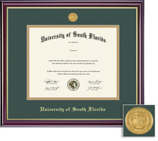 Framing Success Windsor Diploma Frame in a Gloss Cherry Finish and Gold Trim. Masters, PhD