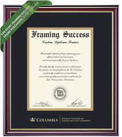 Framing Success Windsor Diploma Frame. Physicians & Surgeons