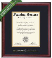 Framing Success Classic Diploma Frame. Physicians & Surgeons