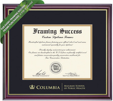 Framing Success Windsor Diploma Frame. Public Health