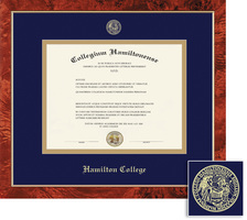 Framing Success Traditional Diploma Frame