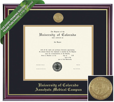 Framing Success Windsor Diploma Frame. Physical Therapy, Nurse, Pharmacy, MD