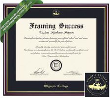 Framing Success Academic Diploma Frame. Bachelors
