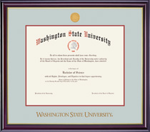 Framing Success Windsor Diploma Frame in a Gloss Cherry Finish and Gold Trim. Pharm, Arch, Vet
