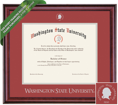 Framing Success Classic Diploma Frame. Bachelors, Masters, Pharmacy, Architecture, Veterinary.