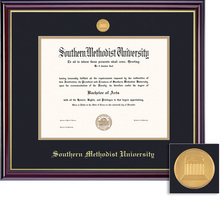 Framing Success MA, PhD Windsor Mdl Dip, Dbl Mat in high gloss cherry finish with gold inner bevel