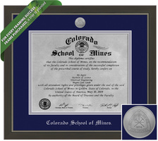 Framing Success Metro Diploma Frame. Metal