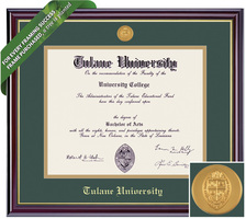 Framing Success Windsor Diploma Frame. Masters, MBA, MD Social Work