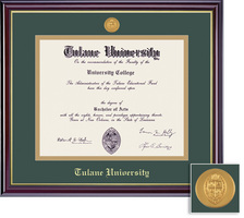 Framing Success Windsor Mdl MA, MBA, MD, SW, PH, or Eng Diploma Frame. Gloss Cherry Finish.Gold Trim