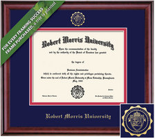 Framing Success 8 x 10 Classic Gold Embossed School Seal Bachelors Diploma Frame