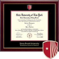 Church Hill Classics Msterpiece Diploma Frame. Medicine (Online Only)