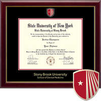 Church Hill Classics Masterpiece Diploma Frame. Dental Medicine (Online Only)
