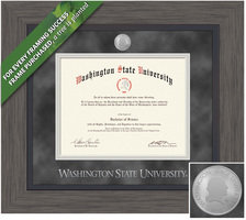 Framing Success Greystone Diploma Frame. BAMAPharmArchitectureVet