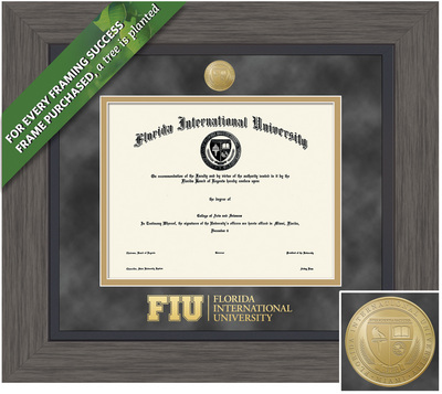 Framing Success 11 x 14 Greystone Gold Medallion Masters, Doctorate Diploma Frame