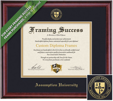 Framing Success 11 x 14 Classic Gold Embossed School Seal Bachelors, Masters Diploma Frame